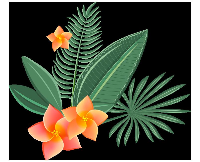 fiori_slide_2